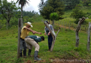 AESMO assisting a farmer who's livestock have been attacked by Puma