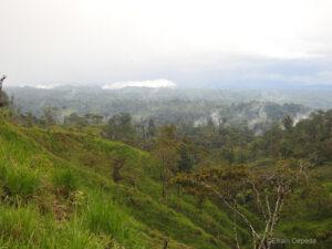 A view of deforestation, Ecuador