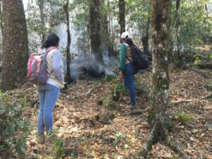 Forest fire at Volcan Pacayita