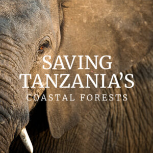 Saving Tanzania's Coastal Forests
