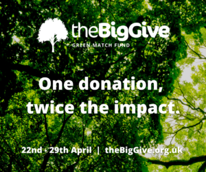 The Big Give event