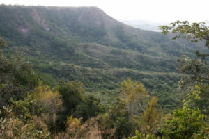 Rondo Plateau, Tanzania