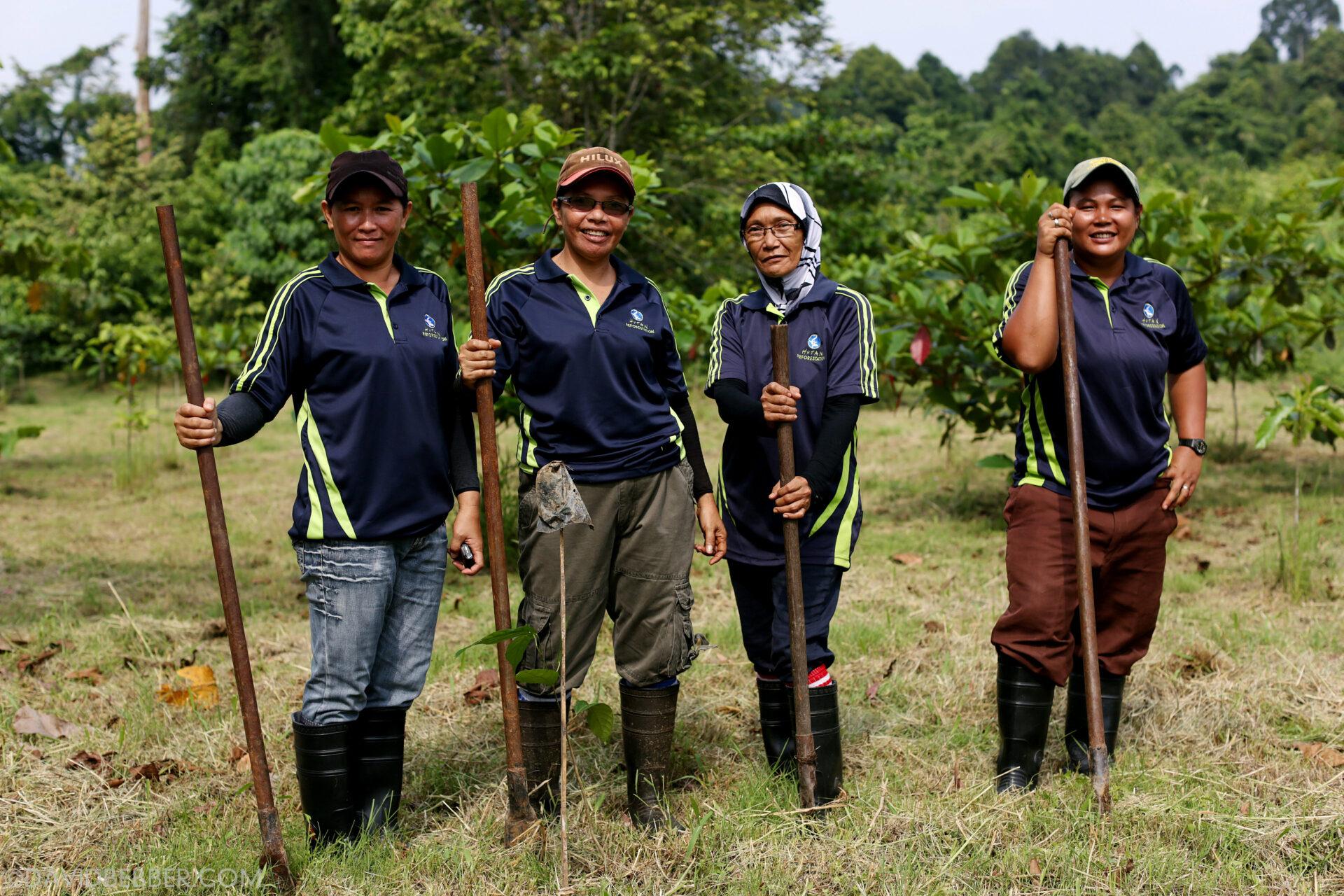 HUTAN's conservation team