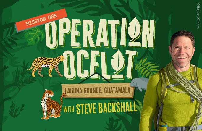 Operation Ocelot Home